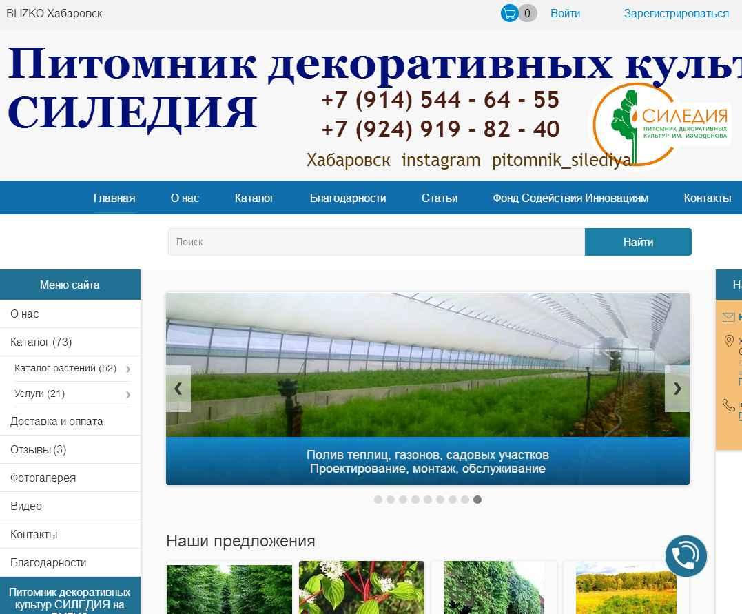 логотип силедия.рф