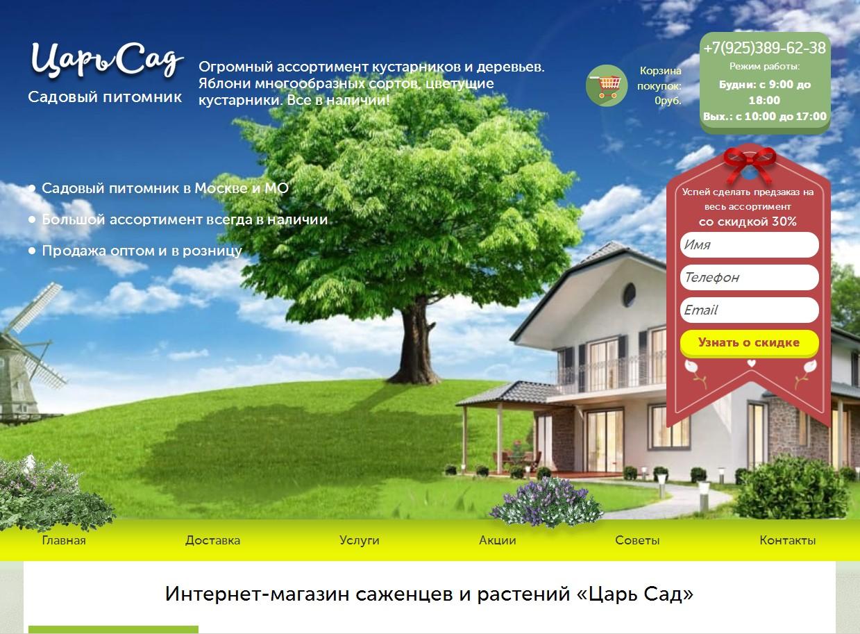 логотип царьсад.рф