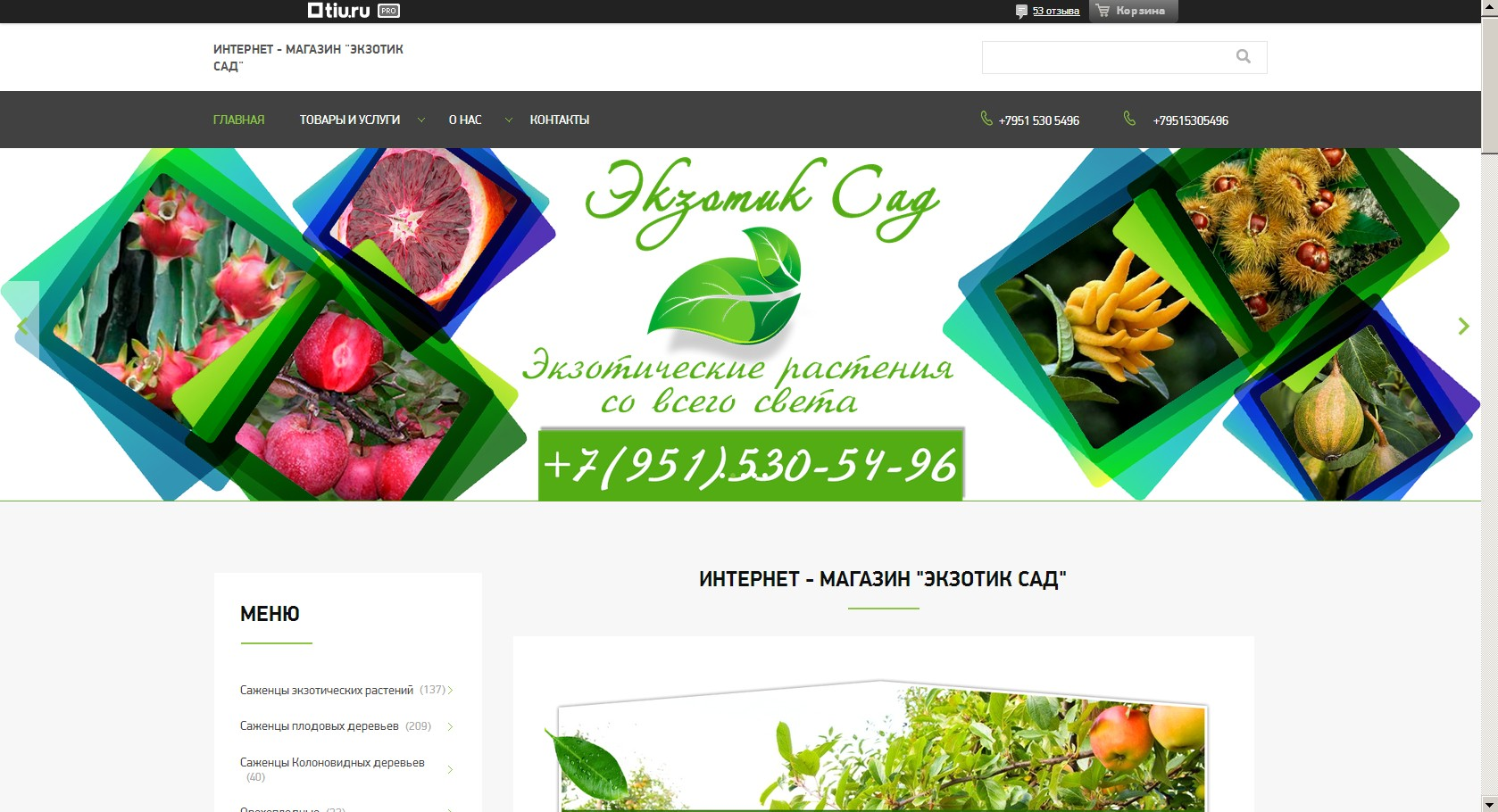 логотип exotiksad.ru