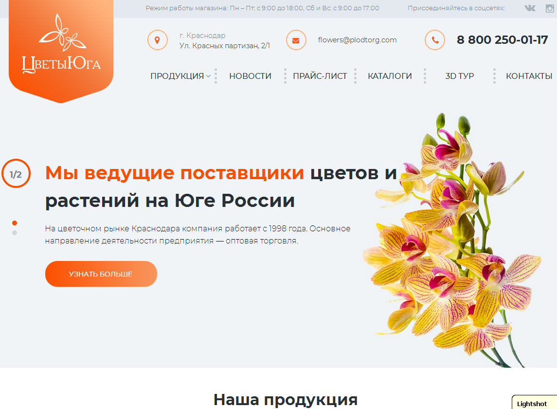 логотип flowers-south.ru