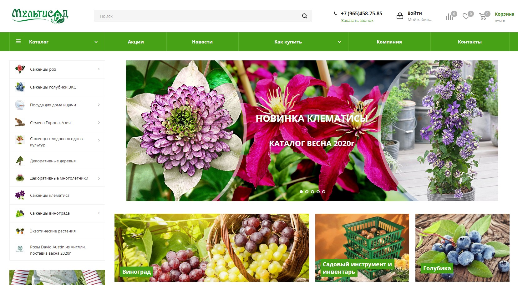 Скриншот интернет-магазина multisad.ru