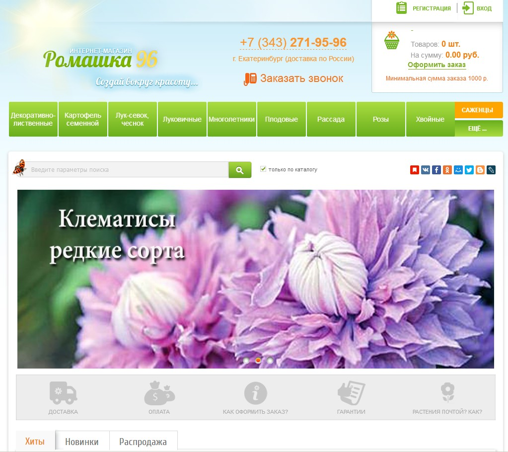 логотип romashka96.ru