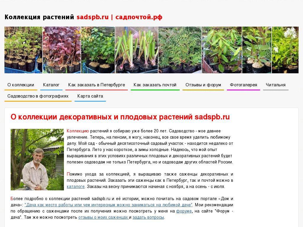 логотип sadspb.ru