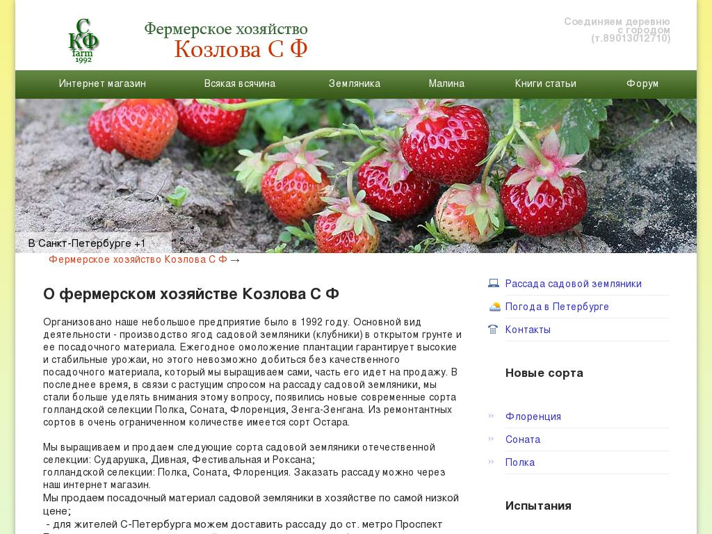 Скриншот интернет-магазина strawberryfarm.info