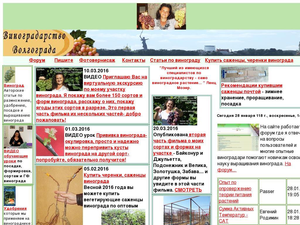 Скриншот интернет-магазина vinograd7.ru