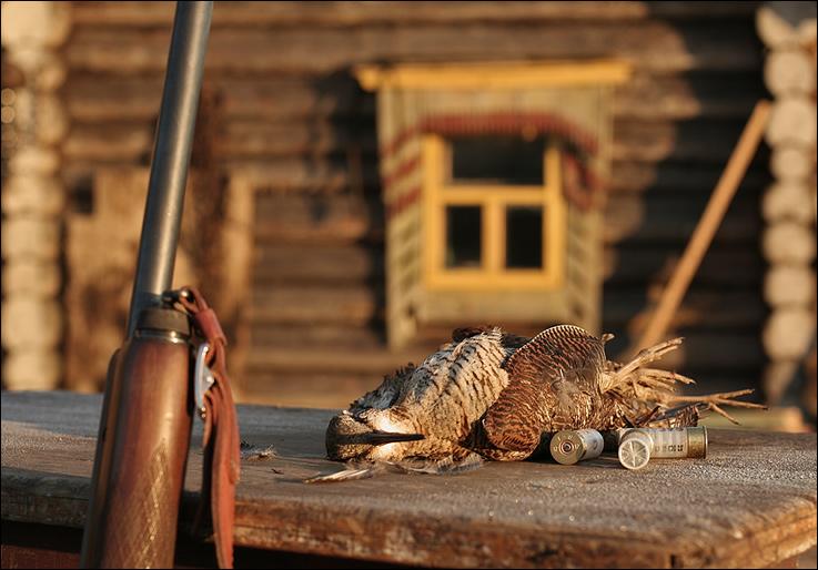 Беларусь – край для охотника