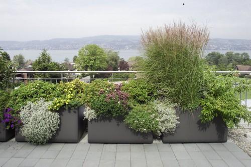 Как выбрать контейнер для садовых растений?